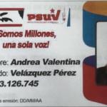 Carnet-e1518816839818-540x399